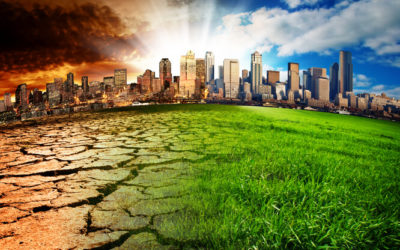 Best Buy Accelerates Efforts to Combat Climate Change